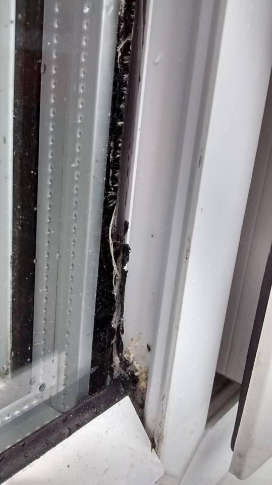 Attempted burglary repairs in Brighton